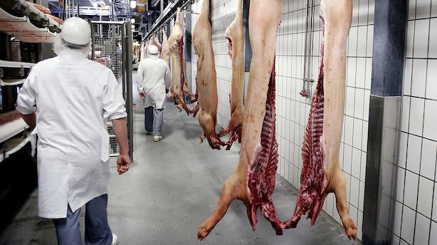 Det skriver medierne: Danish Crown køber polske Gzella Meat Group