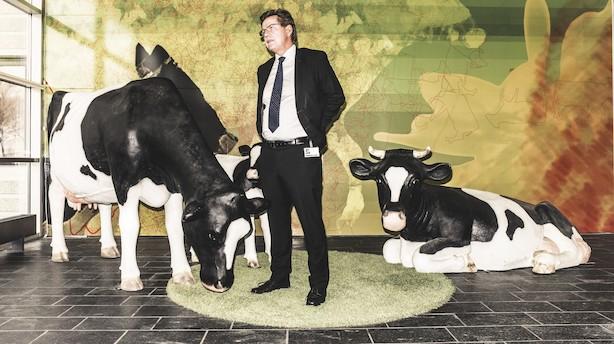 Overskud fra Arla regnskab skal gå til landmænd