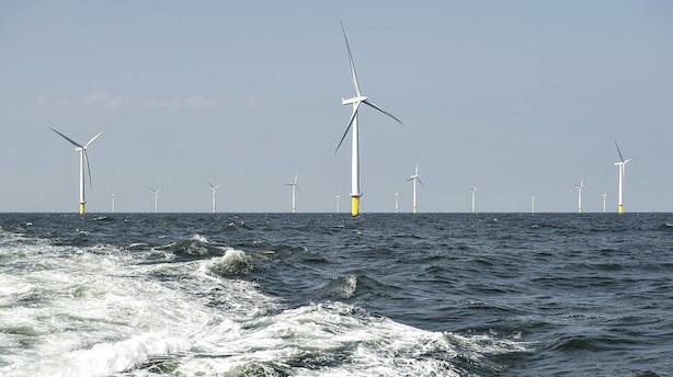 DTU går sammen med Ørsted og Vestas: Kunstig ø i Nordsøen skal opsamle enorme mængder energi fra havvind