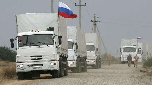 Rusland: Topembedsmand anholdt for landevejstyveri