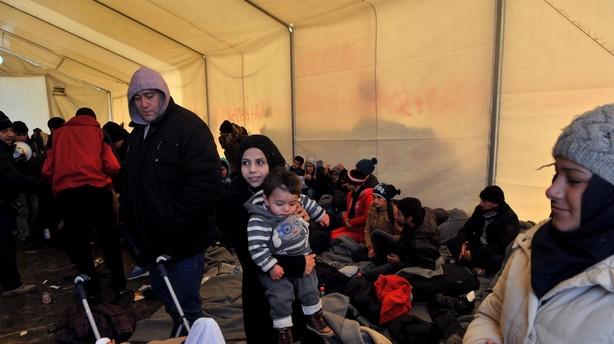 600.000 migranter i Tyskland er væk