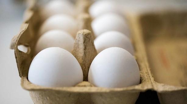 Yderligere to ton forgiftede æg er fundet i Danmark