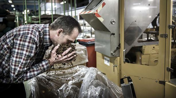 Salg af Scandinavian Tobacco-aktien lukker tidligere end ventet