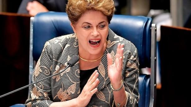 Brasilianske investorer gik glip af vilde kurshop på hjemmebørsen