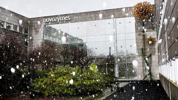 Bestyrelsesmedlem i Novozymes køber 1000 aktier for 299.000 kr
