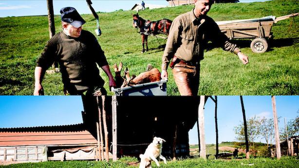 """""""Dit livs buk"""" skal skydes i Transsylvanien"""