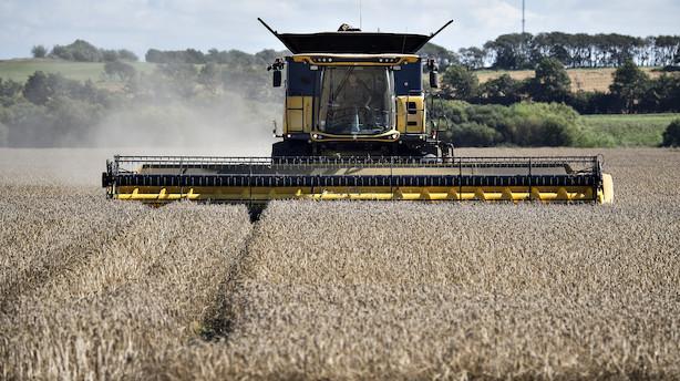 Ny vision: Alle danske fødevarer skal være klimaneutrale i 2050