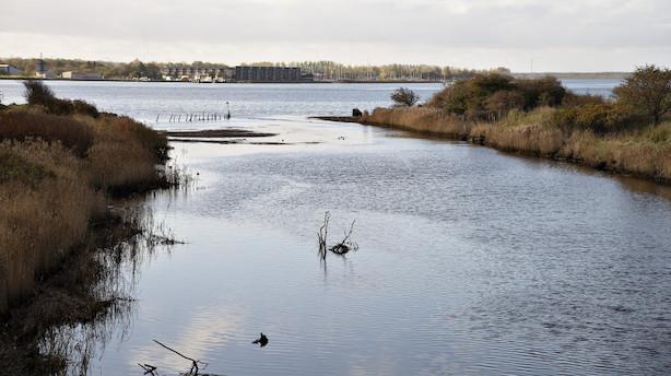Regeringen beder EU om mere tid til at sikre vandmiljø