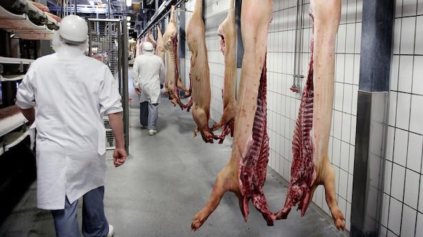 Prisen på grisen stiger igen: Smilet hos bønder og banker bliver endnu større