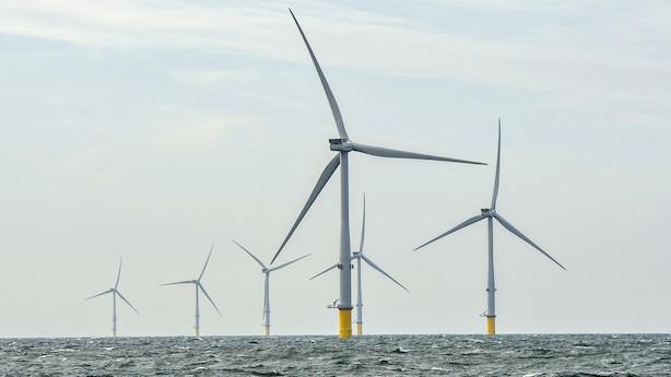 Ti vindkraftparker og elkabler planlægges langs Skånes kyst fra Øresund til Bornholm