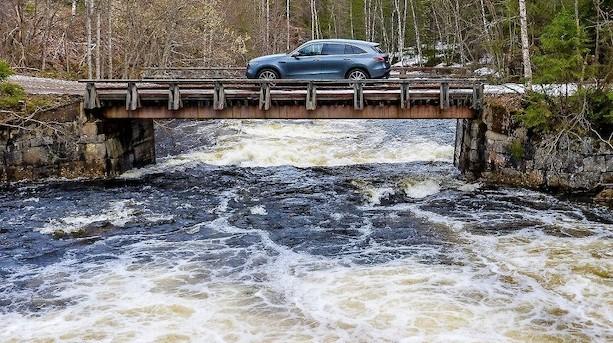 Nye tal fra Norge: Bølgen af grønne biler er blevet til en ustoppelig tsunami