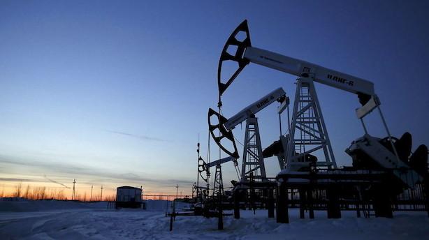 Råvarer: Høje oliepriser trods stigende lagre