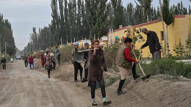 Lovgivere i USA vil straffe Kina for forfølgelse af uighurere
