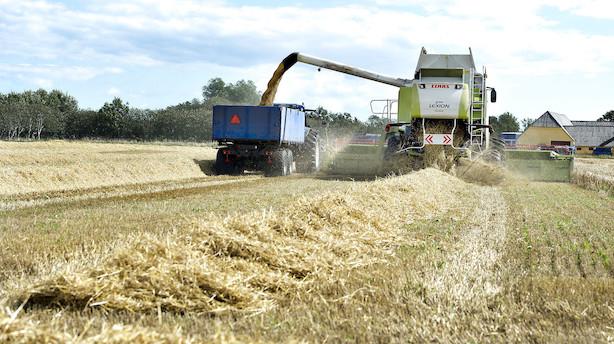 Landbruget om kvælstofudledning: Forkert at pege fingre ad os