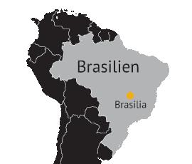 sprog i brasilien