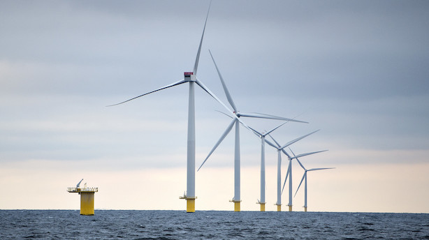 Kronik: Udbygning af vindkraft er meningsløs