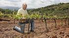 Fire vine til weekenden: På rejse i Italiens saftige druer