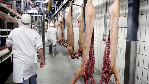 Kronik: Stands forfølgelsen af fødevarebranchen