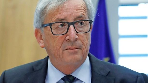 Børsen mener: Øv - EU-modstanderne vinder næste runde