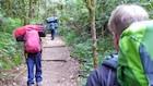 Kilimanjaro skal bestiges i roligt tempo