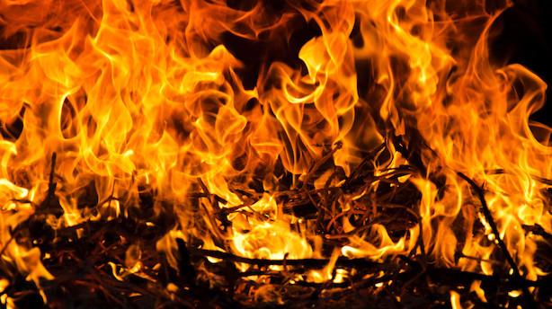 Kurrild-Klitgaard: Kampen om ilden var drevet af menneskets egeninteresse