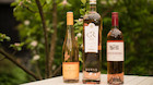 Det er rosévejr: Her er tre gode bud på rosévin du kan hente i supermarkedet