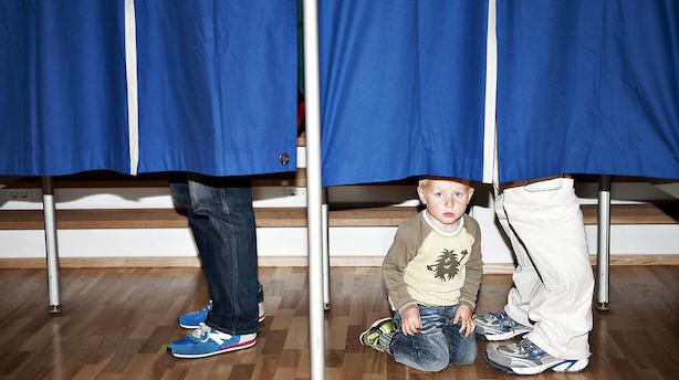 Børsen mener: Større stemmevægt til store skatteydere?