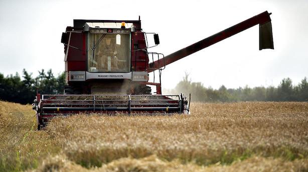 Kronik: Følelser tager livet af landbruget