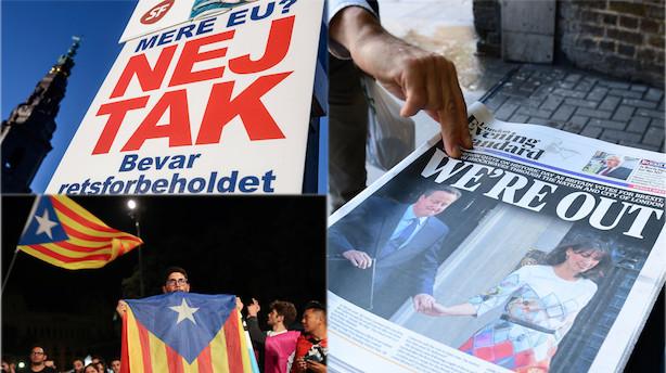 Kronik: Hvorfor folkeafstemninger? Aben ender alligevel hos politikerne