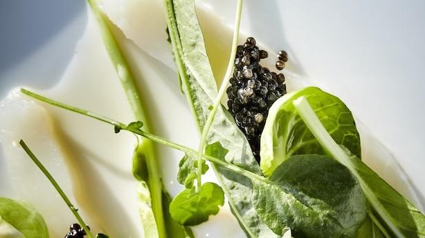 Madanmeldelse af Restaurant Silo fra pleasure.borsen.dk
