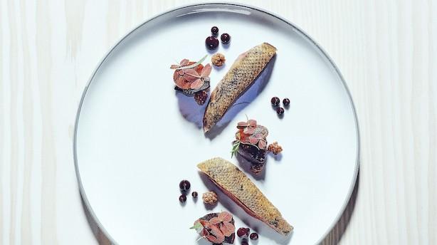 Lækker bourgogne til sæsonens fisk og vildt