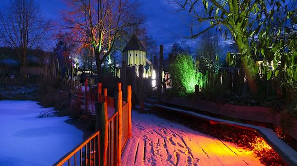 Tag i Odense Zoo, snup en snegl i Juno the Bakery eller se på kunst i Skindergade