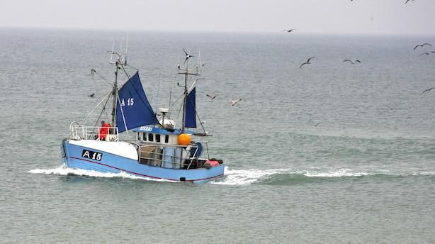 Ole P: Ny kvoteordning er dårligt nyt for dansk fiskeri