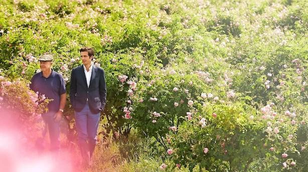 Chanel-duftens dna findes i den sydfranske jord