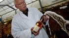 Dansk vin nærmer sig Champagne