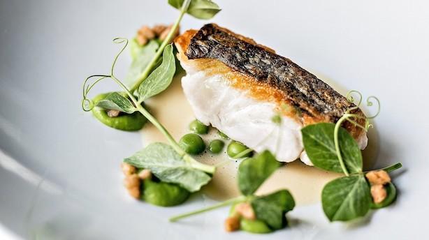 Anmeldelse: Aalborg har fået endnu et sted, der opbygger byen som gastronomisk destination