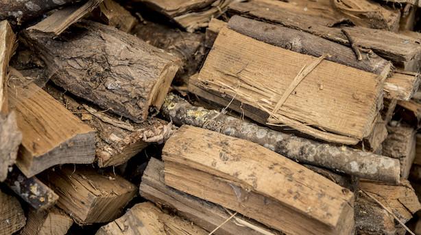 Debat: Biomasse kan være miljøvenlig backup til vindenergi