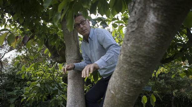 """Jesper så et potentiale og fik aloe vera til Danmark: """"Palle havde fjernet sin hudsvamp med gel fra planten, og han spørger mig derfor, om det ikke er noget, vi skal gøre noget ved"""""""