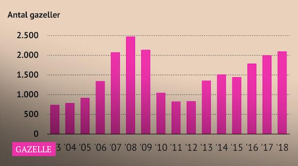 Gazeller på rekordkurs: Tredjeflest nogensinde