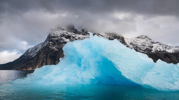 Verdens ældste rubiner gemmer sig i grønlandske miner