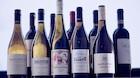 Et godt glas vin med udsigt til Rungsted Havn