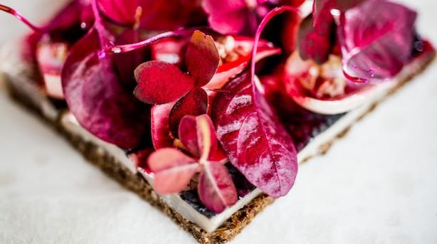 Madanmeldelse: Ole Troelsø fremhæver årets bedste spiseoplevelser