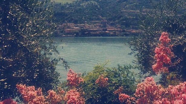 Bo ved vinmarker, bjerge, søbredden og en lille ø i søen i Lago d'Iseo