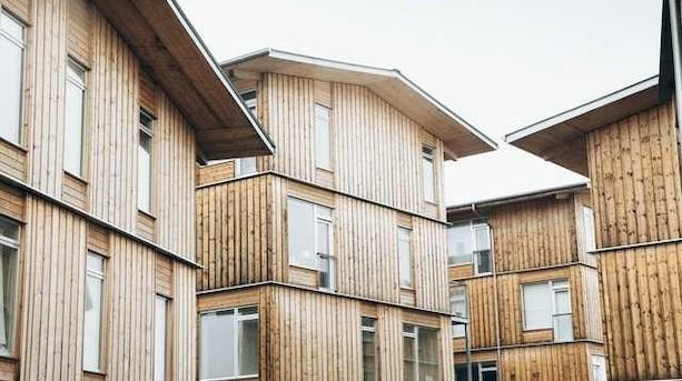 Bygherre opfører Danmarks første boligblokke af træ