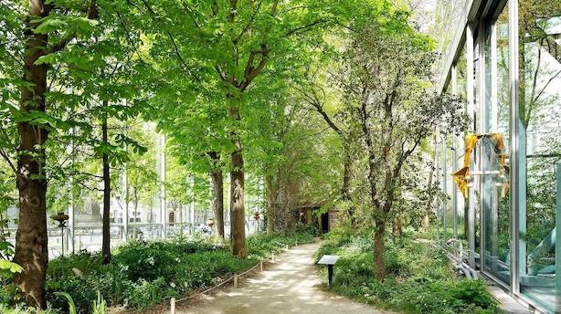 Stor kunst i Paris' hemmelige samling