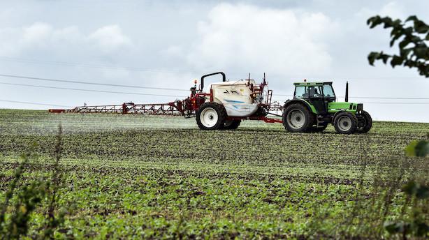 Debat: Landmænd og natur klar til jordfordeling på finansloven