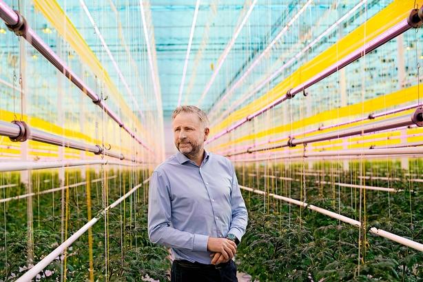 Vækstivrig tomatkonge: Vi er intet uden udlændinge