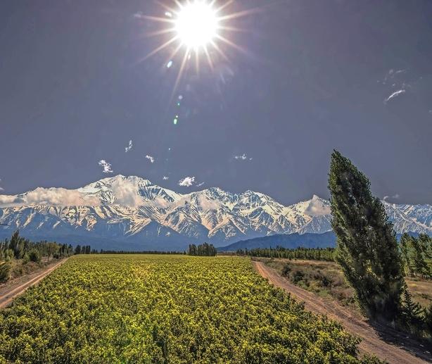 Fornem vin fra Argentinas vindronning