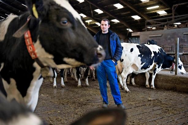 Debat: Der skal flere trainee-stillinger i landbruget