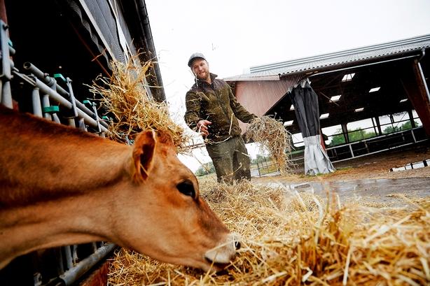 """Økologiske landmænd under pres: """"Det ville jo være fantastisk, hvis staten bare betalte til tiden"""""""